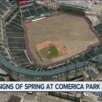 Comerica Park Makeover: New Sod & New Eats