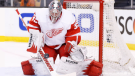 jimmy howard red wings bruins 2014 playoffs game 1 feature